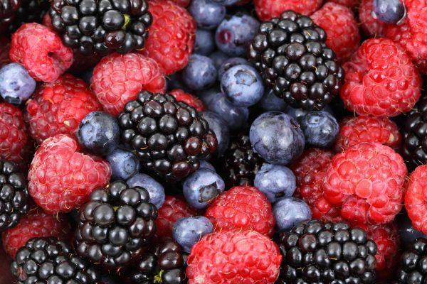 alimentos; fruta